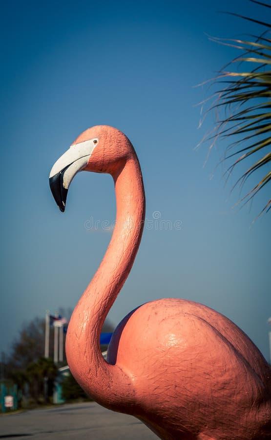 Розовый пластичный фламинго стоковое фото rf