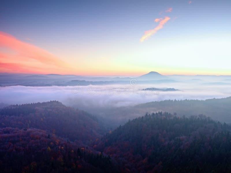 Розовый рассвет в холмистом ландшафте Утро предыдущей зимы туманное в земле стоковая фотография rf