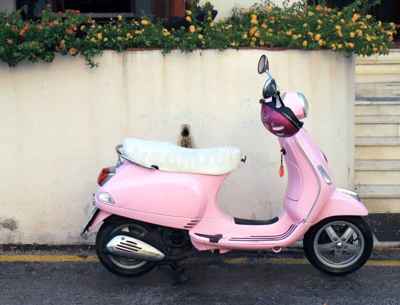Розовый самокат зданием стоковые фотографии rf