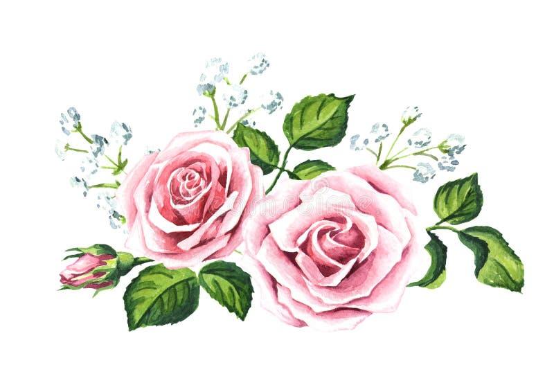 Розовый состав розы и гипсофилы Иллюстрация акварели нарисованная рукой, изолированная на белой предпосылке иллюстрация вектора