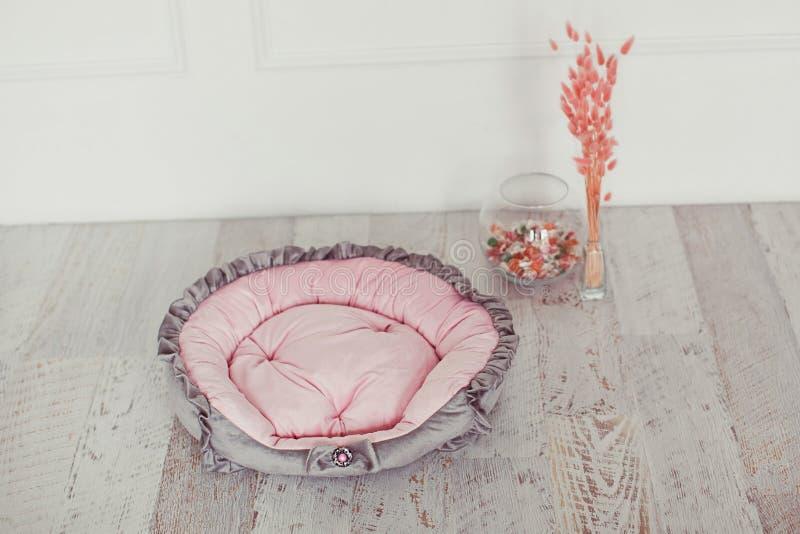 Розовый тюфяк любимчика в комнате стоковые фотографии rf
