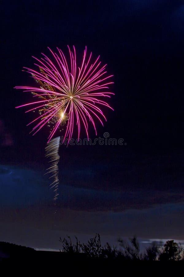 Розовый фейерверк стоковые изображения rf