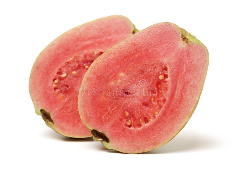 Розовый guava стоковая фотография rf