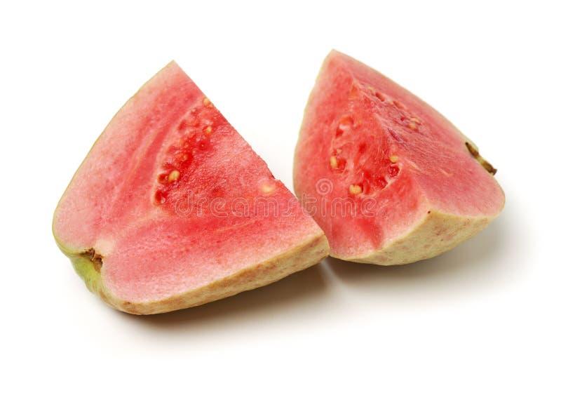 Розовый guava стоковые изображения rf