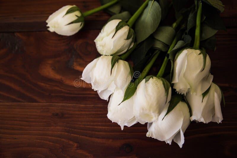 розы белые стоковое фото