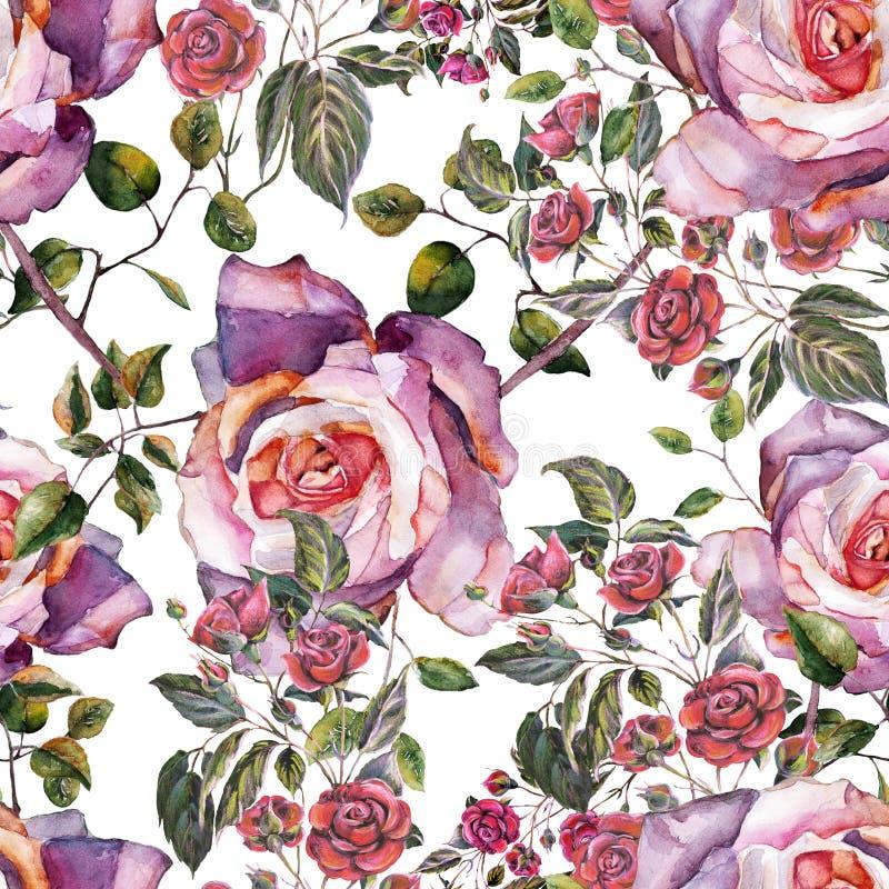 Розы букета акварели на белой предпосылке Безшовная картина для gesign иллюстрация вектора