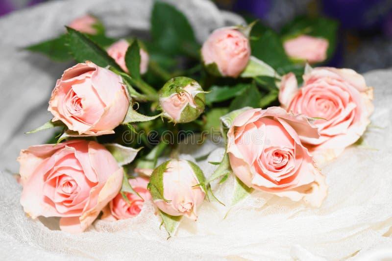 розы букета розовые стоковое изображение