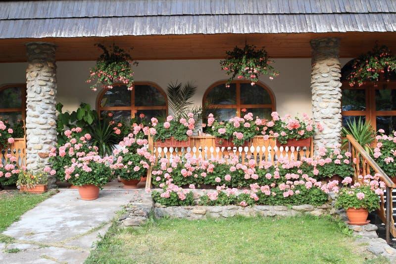 Розы вокруг дома стоковое фото rf
