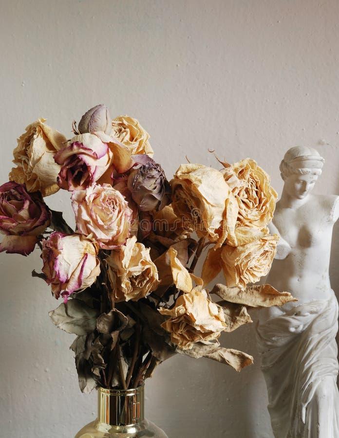 розы высушенные букетом стоковое изображение