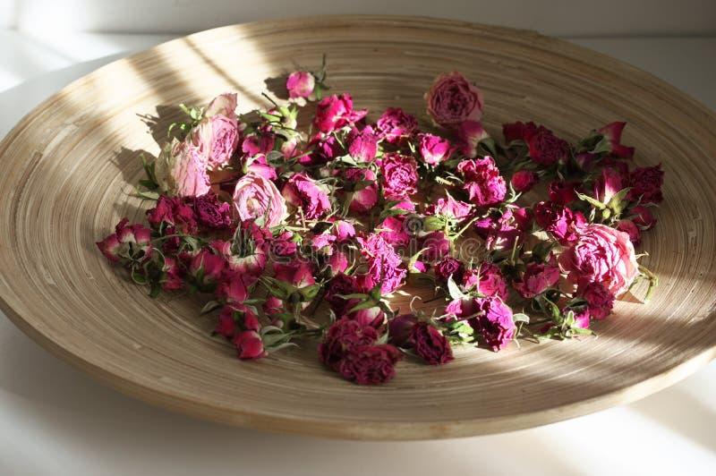 Розы высушенные пурпуром стоковое изображение rf