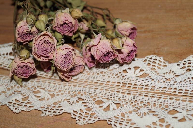 Розы вянут и шнуруют стоковое фото rf