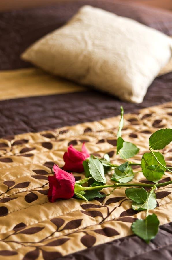 Розы на кровати стоковые фотографии rf