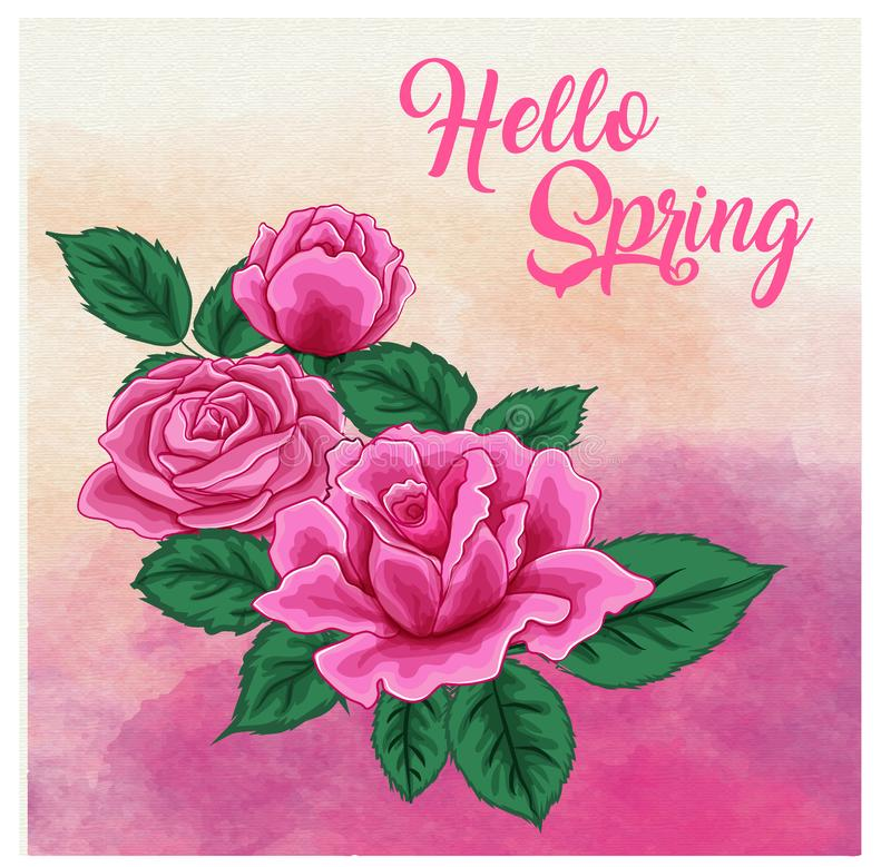Розы на предпосылке акварели, можно использовать как поздравительная открытка, карточка приглашения для wedding, день рождения и  иллюстрация вектора