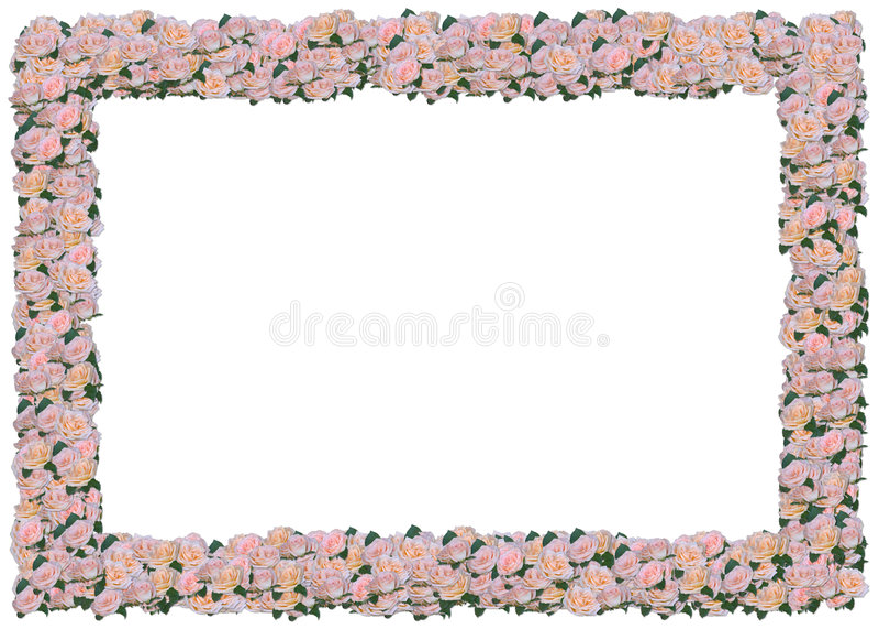 розы персика рамки иллюстрация вектора