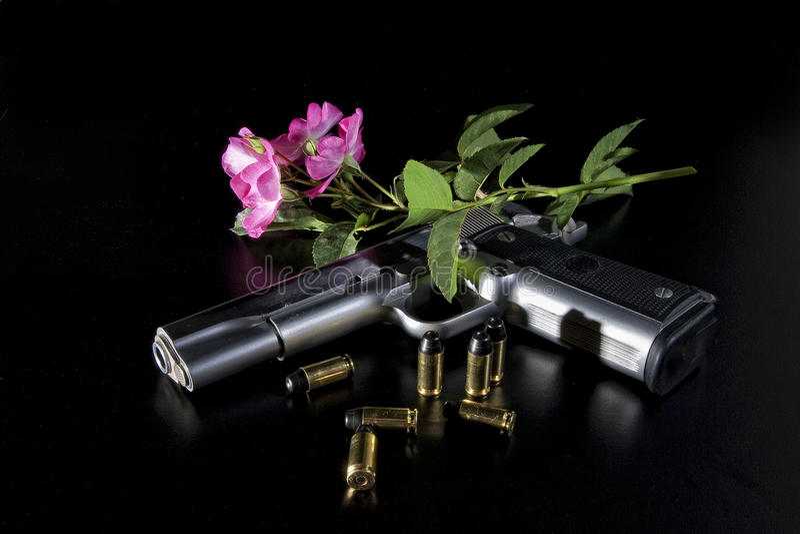 розы пушки стоковое фото