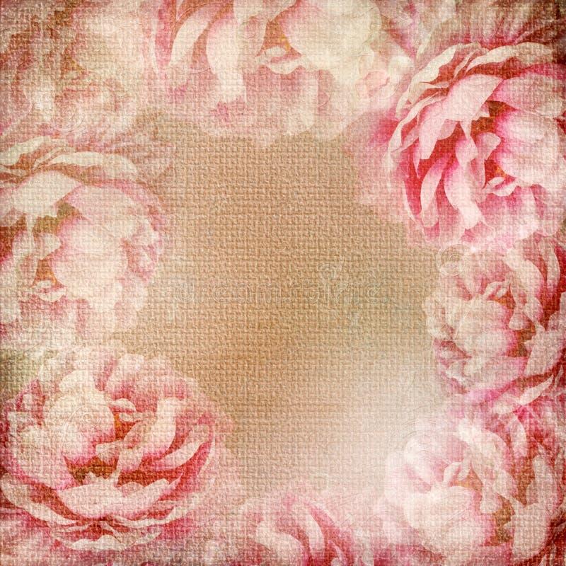 розы 1 предпосылки установили текстурировано стоковое фото rf