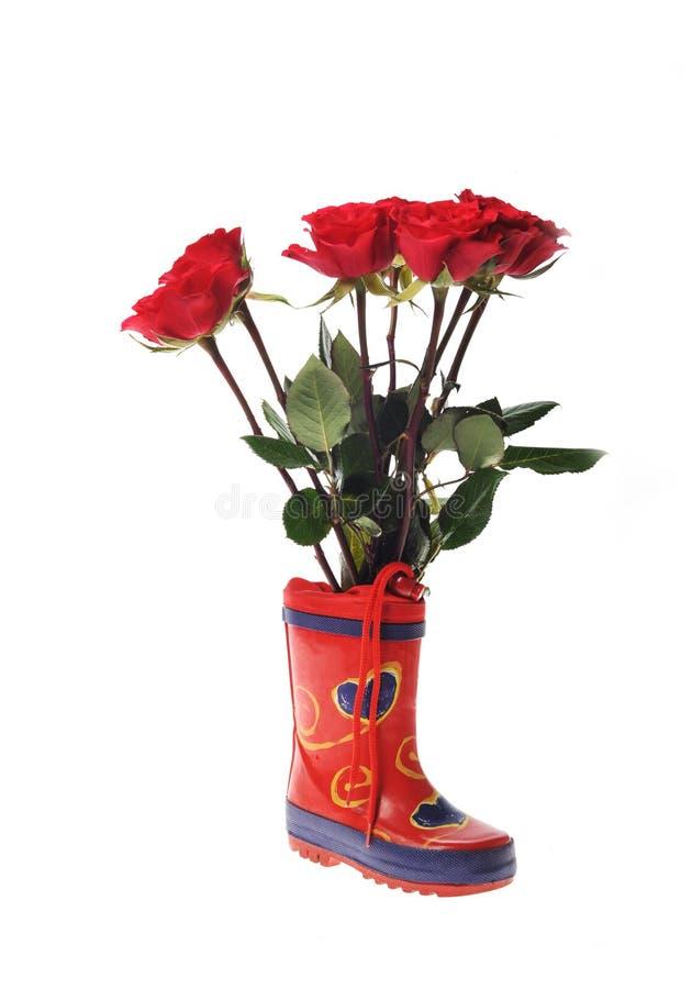 розы overshoe childs малые стоковая фотография