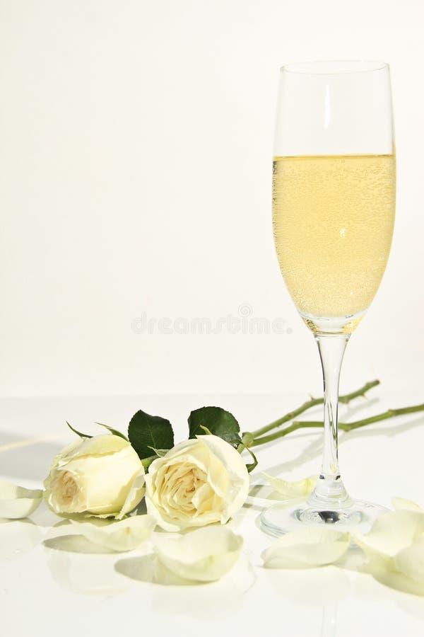Розы Romance Стоковое Фото