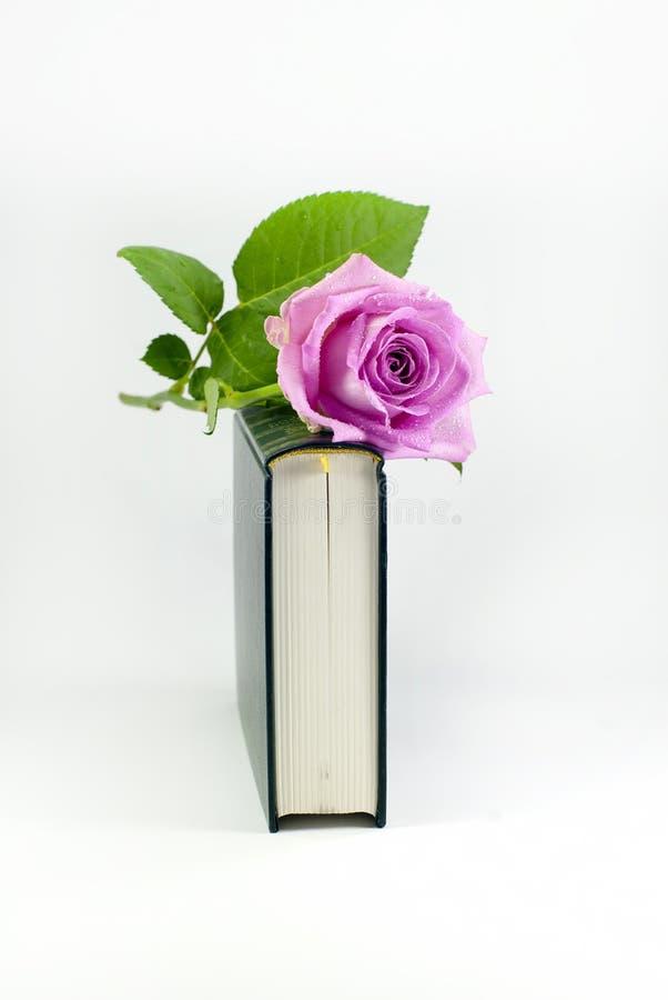 романско стоковая фотография rf