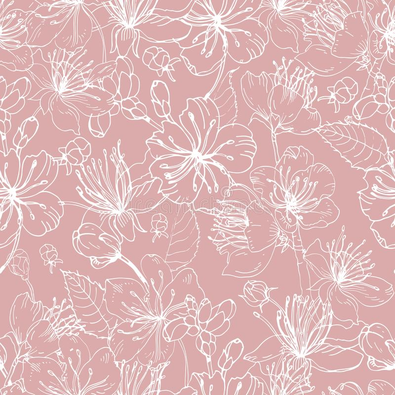Романтичная естественная безшовная картина с красивыми зацветая цветками руки Сакуры японца нарисованной с белыми линиями на пинк иллюстрация вектора