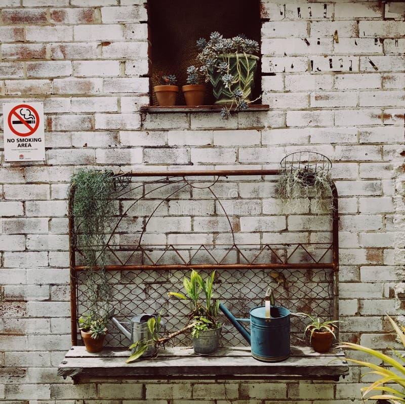 Романтичная идилличная таблица завода в саде с старыми ретро баками, инструментами и заводами цветочного горшка Земля, садовник стоковое изображение