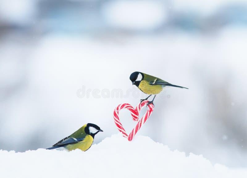 Романтичная карта с 2 птицами летела в красные сладкие леденцы на палочке в бортовых сердцах в белом снеге на день Святого Валент стоковые фотографии rf