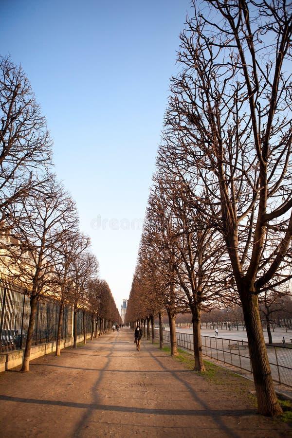 Романтичная осень в Париже стоковое изображение rf