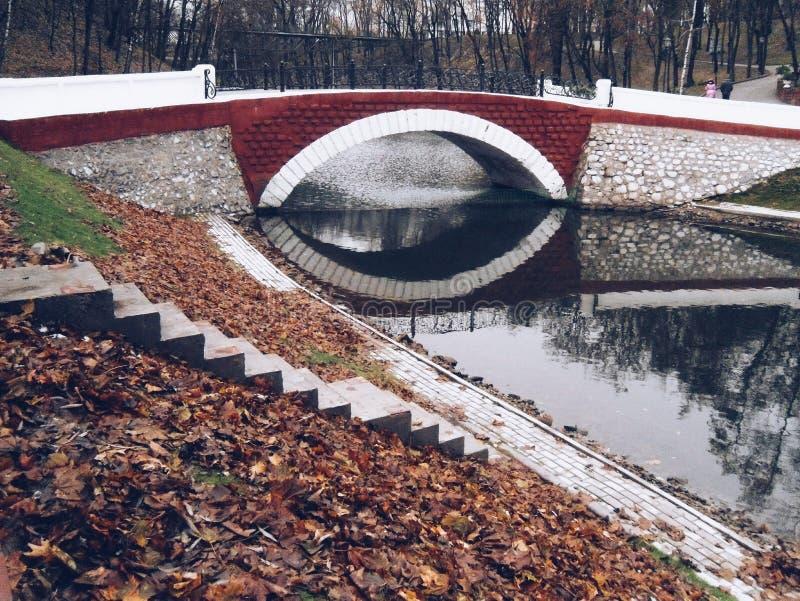 Романтичная осень стоковая фотография