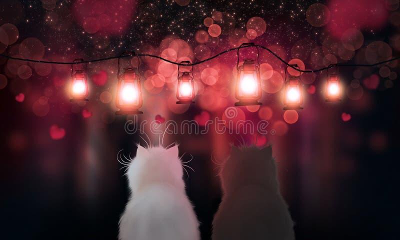 Романтичная предпосылка с сердцами и волшебными фонариками ночи 2 кота во взгляде любов на красном запачканном bokeh, света почти бесплатная иллюстрация
