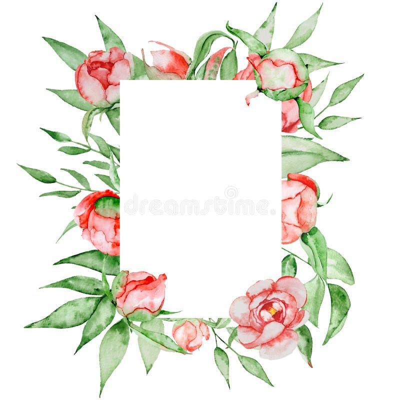 Романтичная рамка с шаблоном карточки цветков Пионы акварели с зеленым цветом выходят на белую предпосылку иллюстратор иллюстраци иллюстрация вектора
