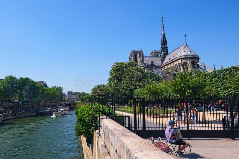 Романтичное Париж Игрок аккордеона около собора Нотр-Дам на солнечном дне стоковое фото rf
