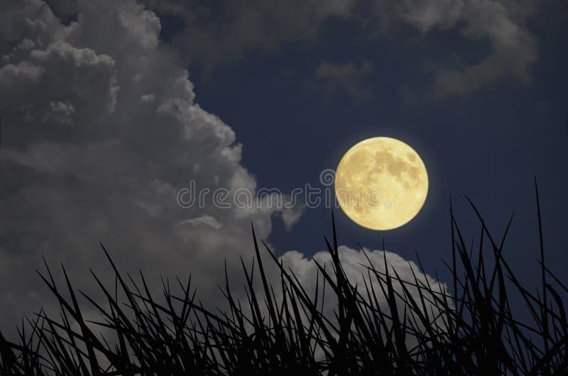 Романтичное полнолуние с белыми облаками в голубом небе стоковое фото rf