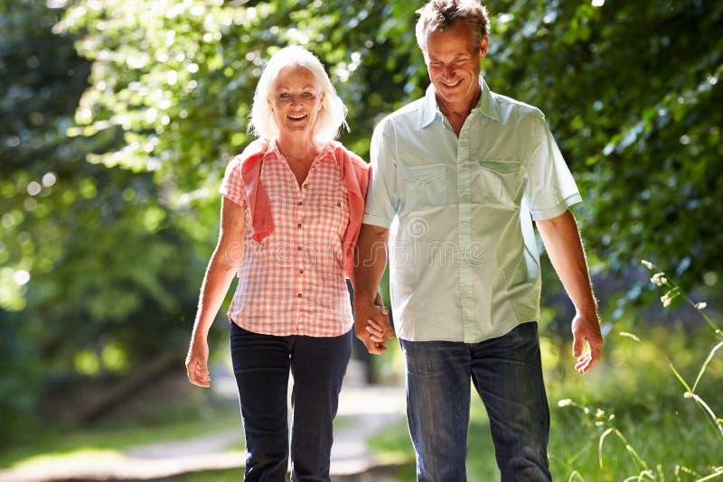 Романтичной пары постаретые серединой идя вдоль пути сельской местности