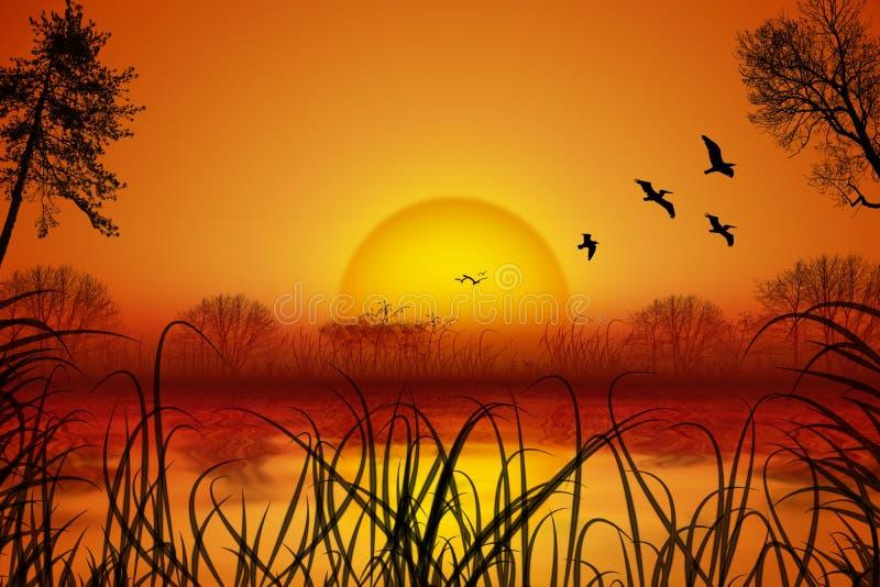 Романтичный ландшафт лета с заходом солнца над водой, птицами, тростником, деревьями иллюстрация вектора