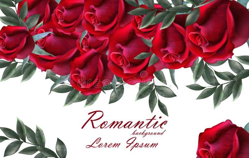 Романтичный вектор карточки роз Красивое оформление знамени цветков красных роз Элегантные предпосылки года сбора винограда оформ иллюстрация штока