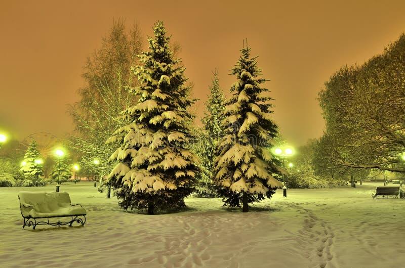 Романтичный вечер зимы в парке города стоковая фотография rf