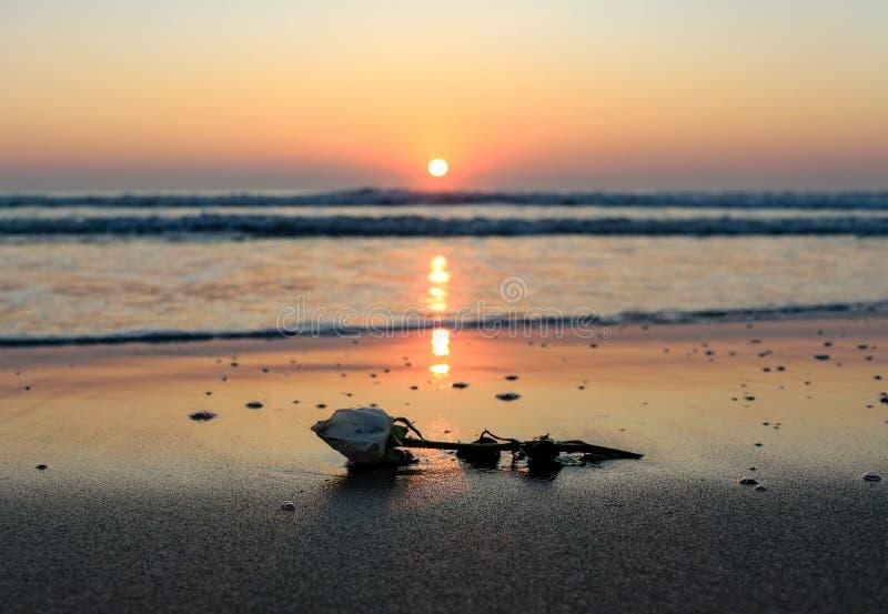 романтичный восход солнца стоковое фото rf
