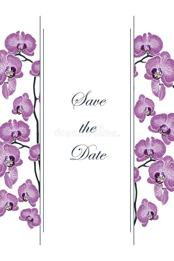 Романтичный дизайн для продуктов женщин иллюстрация вектора