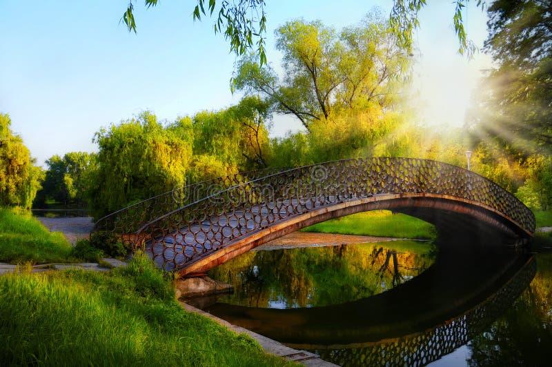 Романтичный момент захода солнца на мосте в парке стоковое изображение