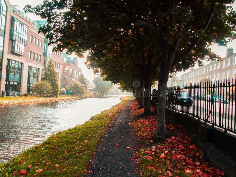 Романтичный долгий путь в осени около реки стоковая фотография