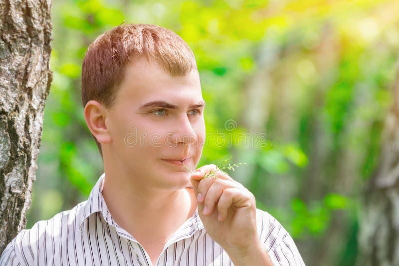 Романтичный парень в парке стоковое фото rf