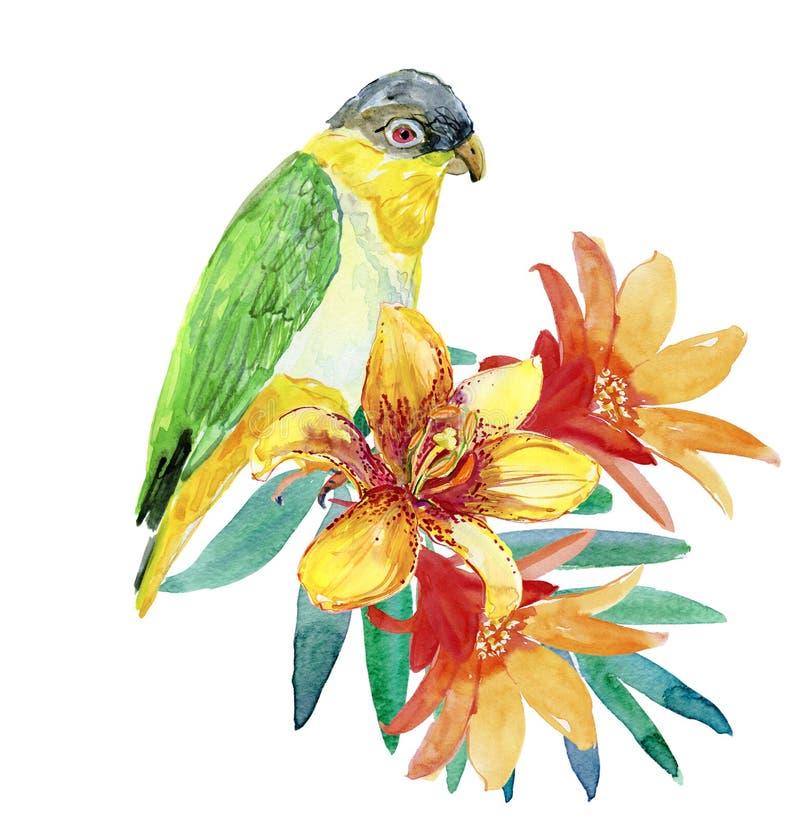 Романтичный попугай и экзотические цветки иллюстрация штока