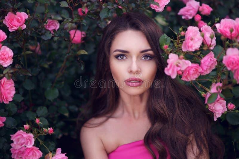 Романтичный портрет красоты женщины в розовых розах стоковое фото