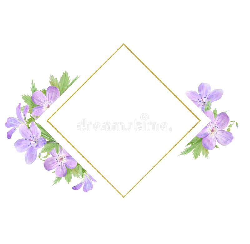 Ромбовидная рамка цветков гераниума акварели сирени изолированных на белой предпосылке Улучшите для логотипа, дизайна стоковое изображение