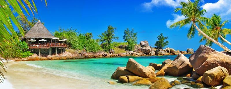 Роскошные тропические праздники стоковые изображения rf