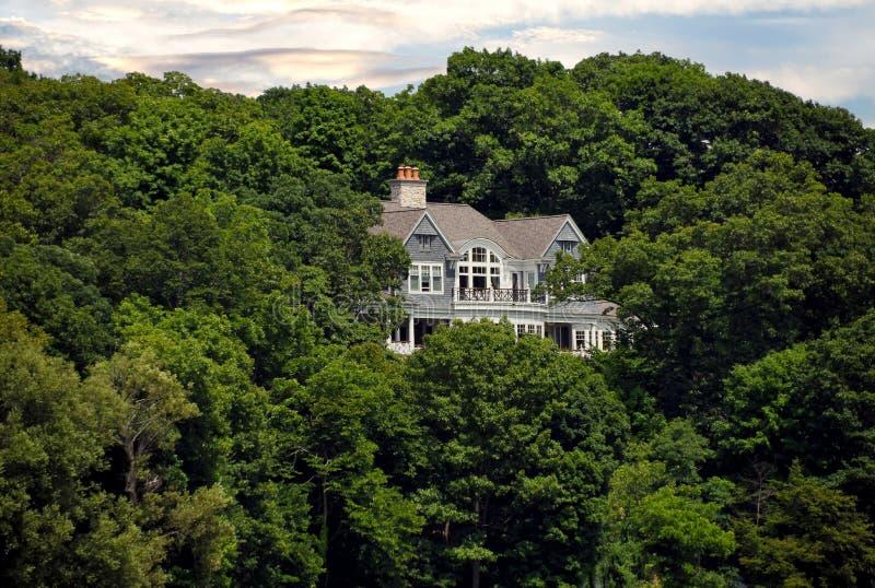 Роскошный дом в деревьях стоковое фото rf