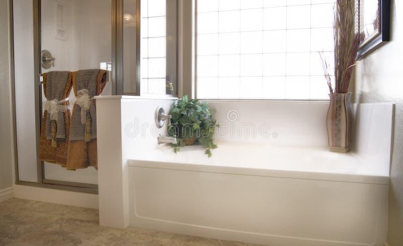 роскошь ванной комнаты стоковые изображения rf