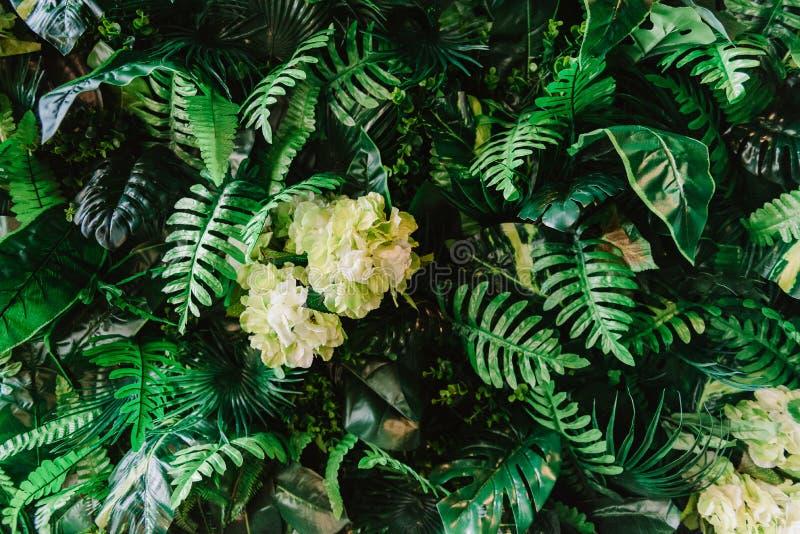 Роскошь украшенная с зелеными лепестками, конец вверх стоковая фотография