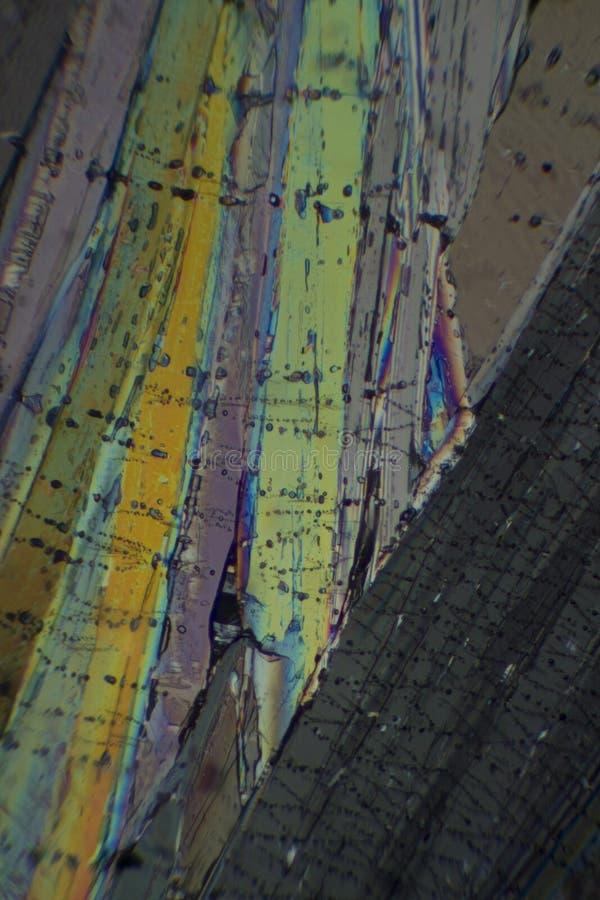 Росноладанная кислота под микроскопом стоковое фото