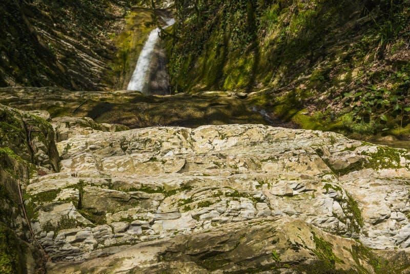 Россия Сочи Река и водопад горы стоковая фотография